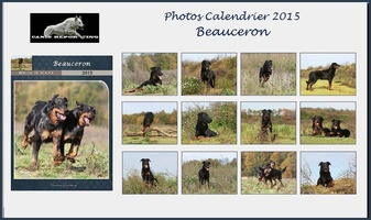 Calendrier Beauceron 2015